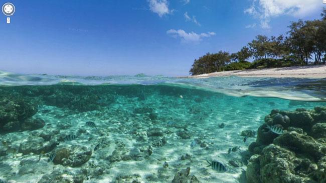Google, Sandy Island: l'isola che non c'è