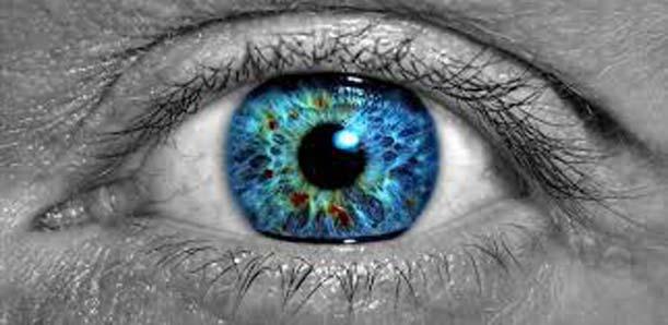 L'app medica che fotografa l'occhio